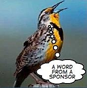 MeadowlarkSponsor